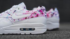 Nike_Air_Max_1_Print_1_hd_1600