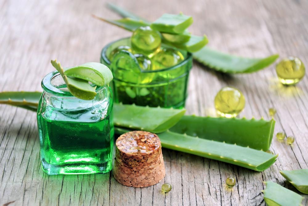 Aloe vera plant gebruik - lifehacks voor huidverzorging aftersun BurgertrutjesNL